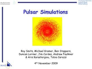Pulsar Simulations