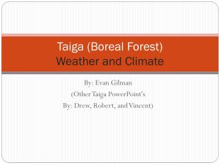 Taiga (Boreal Forest) Weather and Climate