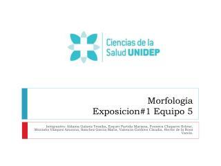 Morfología  Exposicion#1 Equipo 5