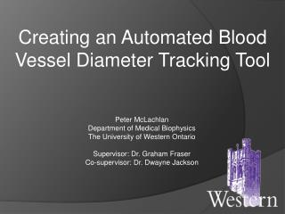 Creating an Automated Blood Vessel Diameter Tracking Tool