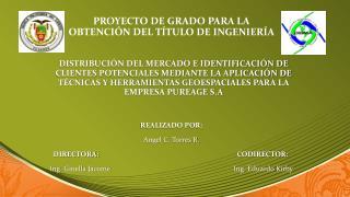 REALIZADO POR: Angel C. Torres R. DIRECTORA:CODIRECTOR: