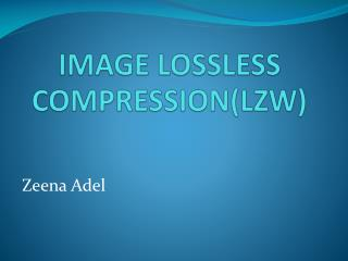 IMAGE LOSSLESS COMPRESSION(LZW)