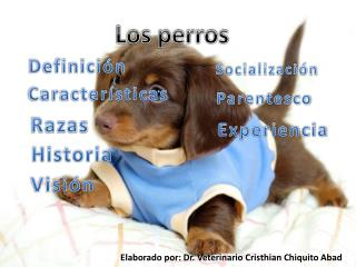 Elaborado por: Dr. Veterinario Cristhian Chiquito Abad