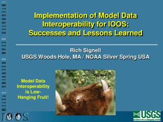 Implementation of Model Data Interoperability for IOOS:  Successes and Lessons Learned