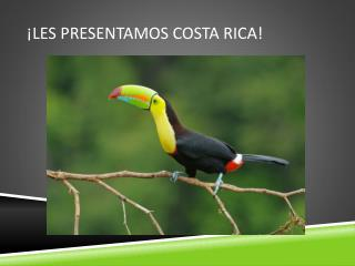 �Les Presentamos Costa Rica!