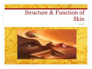 Structure & Function of Skin