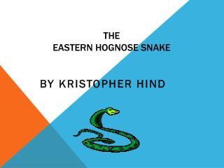 The  Eastern Hognose Snake
