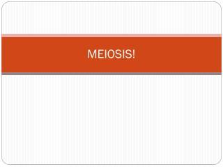 MEIOSIS!