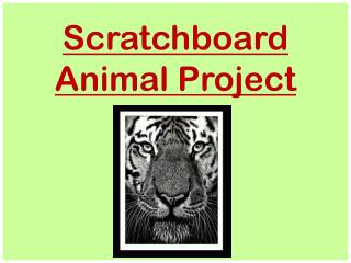 Scratchboard Animal Project