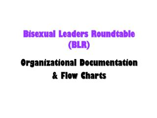 Bisexual Leaders Roundtable  ( BLR)