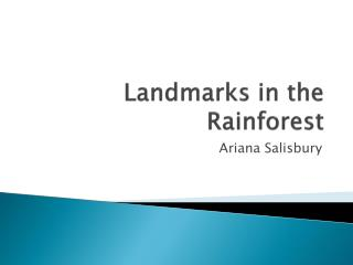 Landmarks in the Rainforest