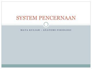 SYSTEM PENCERNAAN