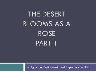 The Desert Blooms as a  Rose Part 1