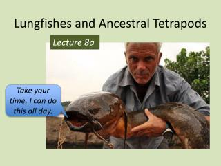 Lungfishes and Ancestral  Tetrapods