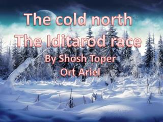 The cold north  The Iditarod race  By Shosh Toper Ort Ariel