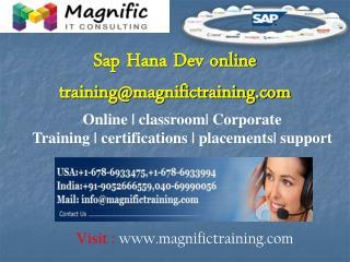 Sap Hana Dev online training@magnifictraining.com