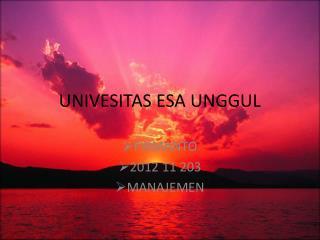 UNIVESITAS ESA UNGGUL
