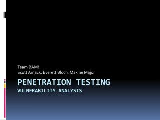 Penetration Testing vulnerability analysis