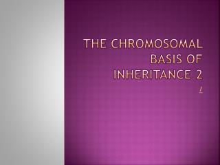 The Chromosomal Basis of Inheritance 2
