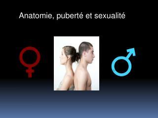 Anatomie, puberté et sexualité
