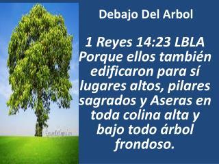 Debajo  Del  Arbol