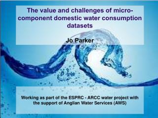 The value and challenges of  micro-component  domestic water consumption datasets Jo Parker