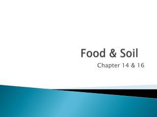 Food & Soil