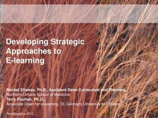 Developing Strategic Approaches to E-learning