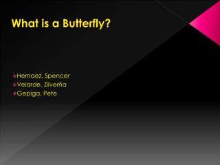 What is a Butterfly?