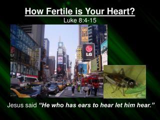 How Fertile is Your Heart? Luke  8:4-15