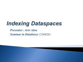 Indexing Dataspaces
