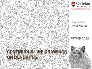 Continuous Line Drawings on Dendrites