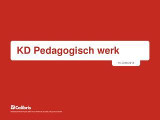KD Pedagogisch werk