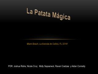 Miami Beach, La  Avenida  de Collins, FL 33141