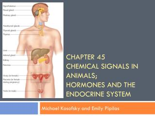 Chapter 45 Chemical Signals in Animals; Hormones and the Endocrine System