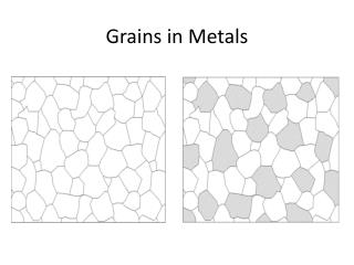 Grains in Metals