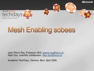 Mesh Enabling  sobees