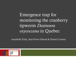 Emergence  trap  for monitoring the  cranberry  tipworm  Dasineura oxycoccana in  Quebec
