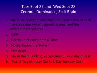 Tues Sept 27 and  Wed Sept 28 Cerebral Dominance, Split Brain
