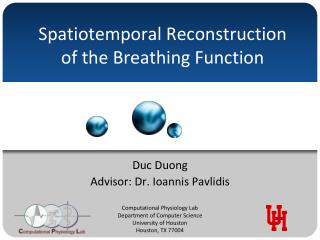 Spatiotemporal Reconstruction of the Breathing Function