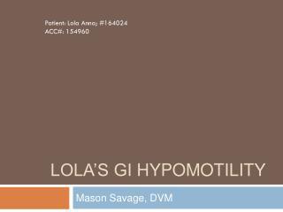 Lola's GI  Hypomotility
