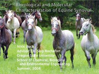 Rheological Characterization of Polymers