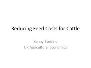 Reducing Feed Costs for Cattle