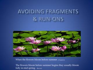 Avoiding Fragments &  Run-ons