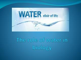 The role of water in biology