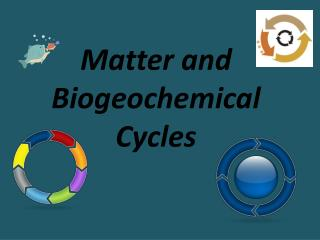 Matter and Biogeochemical  Cycles