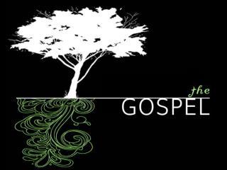 LIVING in the Light of the Gospel