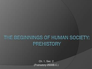 The Beginnings of human society:                         prehistory