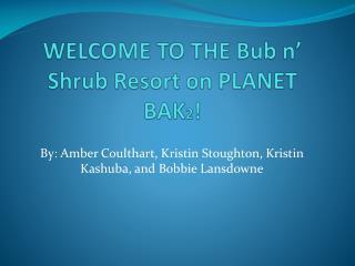 WELCOME TO  THE  Bub  n� Shrub Resort on PLANET  BAK 2 !