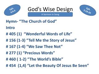 God's Wise Design